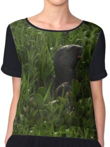 I Otter be in Pictures Chiffon Top