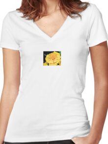 Sunny Disposition Women's Fitted V-Neck T-Shirt