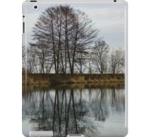 Of Mirrors and Trees iPad Case/Skin