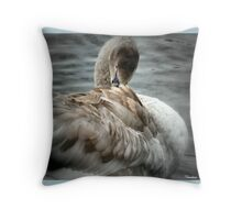 Cygnet To  Swan Throw Pillow