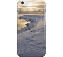 Icy, Snowy Lake Shore Morning iPhone Case/Skin