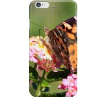 Passion Butterfly iPhone Case/Skin