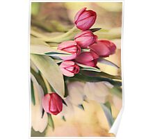 Vintage Tulips Poster