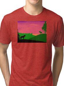North America Scene Tri-blend T-Shirt