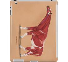 Paraceratherium anatomical study iPad Case/Skin