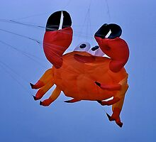 Fly a Kite !  (pillow crab) by Nancy Richard
