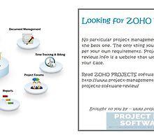 ZOHO PROJECTS Review - Best project management software by projectmanag