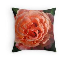 Peach Beauty Pillow Throw Pillow