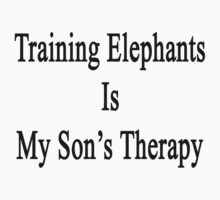 Training Elephants Is My Son's Therapy by supernova23