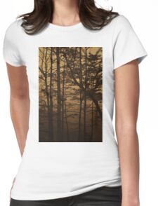Monument Lake, As Is Womens Fitted T-Shirt