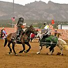 Jousting ! by Nancy Richard