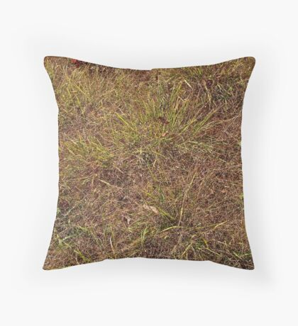 Dried grass Throw Pillow