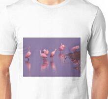 Roseate Spoonbills, As Is T-Shirt
