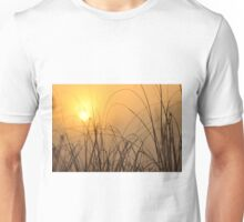 Everglades Sunrise, As Is Unisex T-Shirt