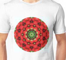 Strawberry season mandala k5 1347 Unisex T-Shirt