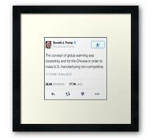 Donald Trump- Global Warming  Framed Print