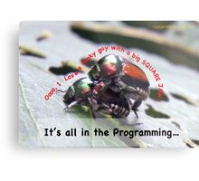 Sexual attraction, it's all in the Programming… Metal Print
