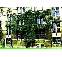 Christ Church College Vines Photographic Print