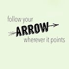 Arrow by canvasskin