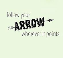Arrow by canvasskin