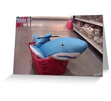 Shopping for a Shark  Greeting Card