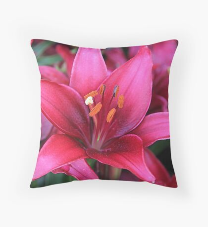 spicy daylily.. Throw Pillow