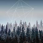 Woods  by Mareike Böhmer