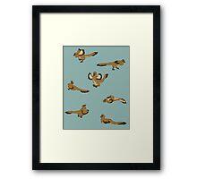 Blue Playful Raptors Framed Print