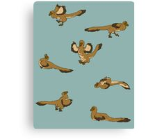 Blue Playful Raptors Canvas Print