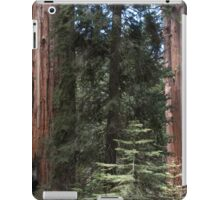 Forest Giants iPad Case/Skin