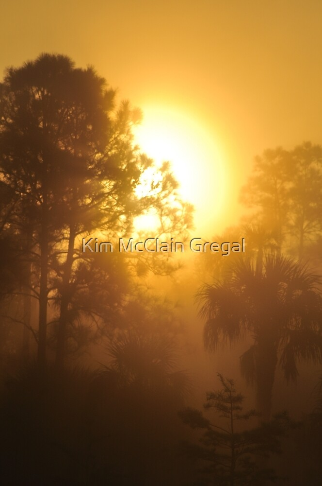 Monument Lake Sunrise, As Is by Kim McClain Gregal