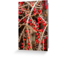 red ball Greeting Card