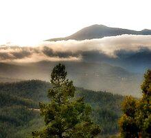 High Nature by lorib