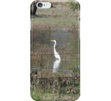 Bird in Flood Water iPhone Case/Skin