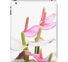 Pink and White Lilies Top View iPad Case/Skin