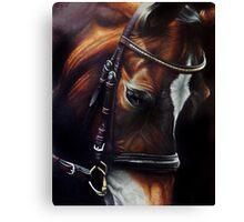 Horse and Tack Canvas Print