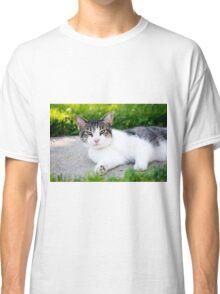 Unimpressed Cat Classic T-Shirt