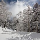 Shiga Kogen, Japan Pillow by RDography