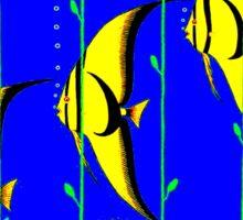 """""""QUEENSLAND"""" Australia Great Barrier Reef Travel Print Sticker"""