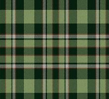 02903 Tuscaloosa County, Alabama Tartan  by Detnecs2013