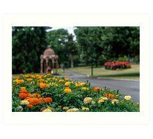 Launceston City Park January 2014 Art Print