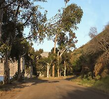 Approaching El Capitan Reservoir, San Diego County, California, 10 by heatherfriedman