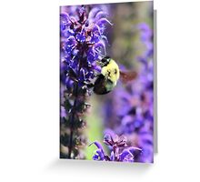 Bee Collecting Pollen From Purple Flower Greeting Card