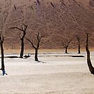 Ghosts of the Deadvlei I by Jennifer Sumpton