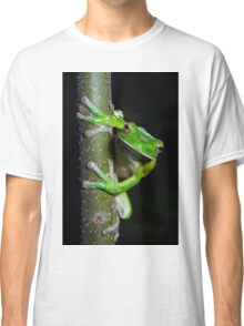 White-lipped tree frog Classic T-Shirt