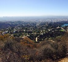 Hollywood Sign by rachelsue