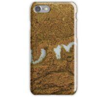 Ground Cumin iPhone Case/Skin