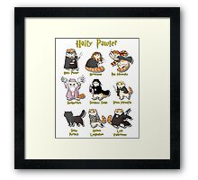 Hairy Pawter Meow 9 Characters Framed Print