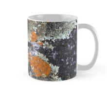 Lichen patterns Mug
