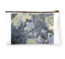 patterns in the lichen Studio Pouch
